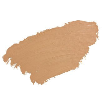 Totally Transforming Concealer: Warm Light